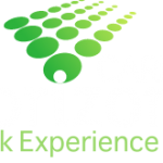 Work Experience websites